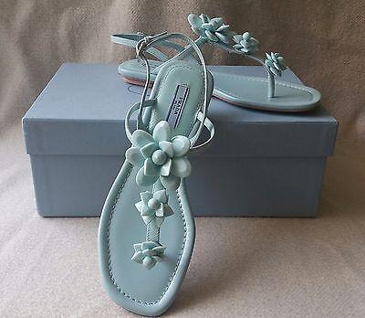 NIB Auth Prada 37 7 Floral Flower T Strap Leather Sandals Flat Thong Shoes Blue