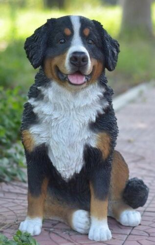Large BERNESE MOUNTAIN DOG  Statue Figurine -Life Like Figurine Home/ Garden