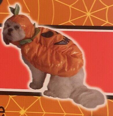 NEW Cute PUMPKIN Pet DOG Halloween COSTUME Spooky Village ~ FREE SHIPPING!](Cute Pet Halloween Costumes)