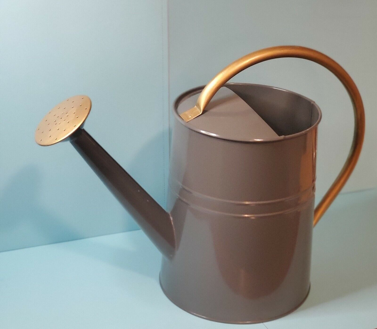 Metal Adult Watering Can 1 Gallon White W/ Gold or Gray W/Go