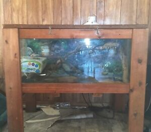 Reptile tank Moving Need gone!