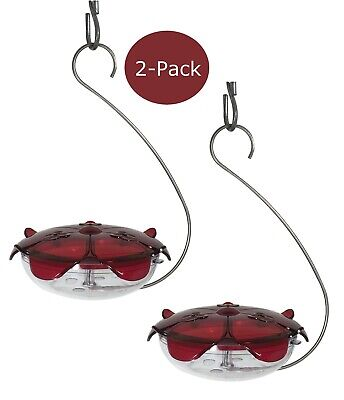 Droll Yankees Ruby Sipper Hummingbird Hanging Feeder Clear (Pack of 2) Hc Feeder