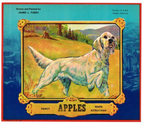 ORIGINAL APPLE CRATE LABEL VINTAGE RETRIEVER DOG VISALIA SCARCE ADVERTISING 1935