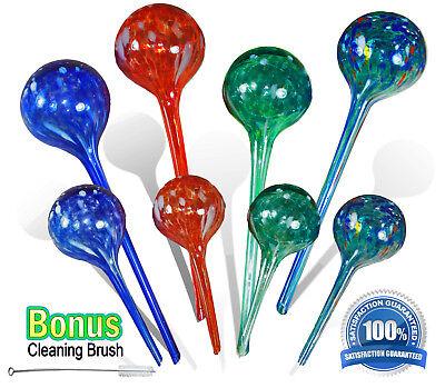 Aqua Plant Glass Watering Globes - Automatic Watering Ball Bulbs  As Seen On TV As Seen On Tv Waterer
