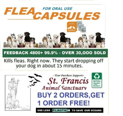 St. Francis Animal Rescue FLEA Killer control SMALL dogs cats 16 doses