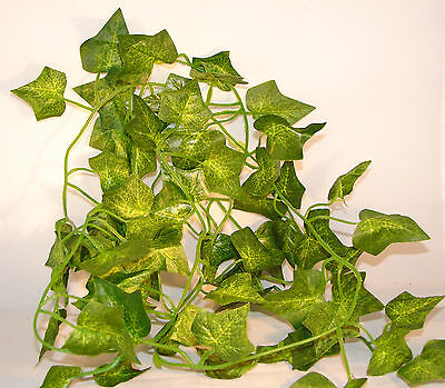 1 x Terrarien Kunststoffpflanze Efeu-Ranke ca. 180cm TZS!!