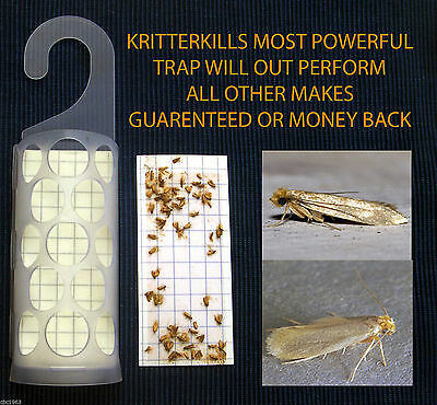 5 x KRITTERKILL CLOTHES MOTH PHEROMONE TRAPS ...