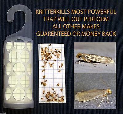 5 x KRITTERKILL CLOTHES MOTH PHEROMONE TRAPS ...