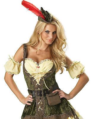 Racy Robin Hood Fairytale Honey Sexy Womens Fancy Halloween Costume Dress Medium