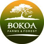 bokoafarms