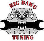 Bigdawgtuning14