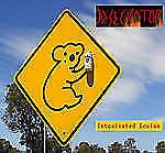 intoxicated_koala