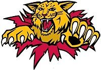 Wildcats May 1 @ 4pm 1 lower bowl ticket .