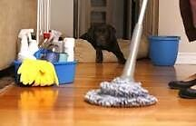 Helping hands cleaning services Acacia Ridge Brisbane South West Preview