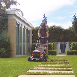 Sustain Garden Care -- zero emissions lawn and garden maintenance Cumberland Park Mitcham Area Preview