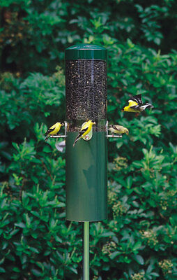 Birds Choice Classic Bird Feeder w/ Built-In Squirrel Baffle & Pole NP431 Green, used for sale  Hyde Park