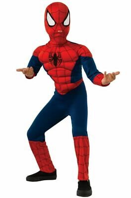 Spider Man Muscle Costume (Ultimate Spider-Man Muscle Chest Kids Costume, Small)
