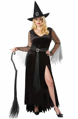 Rich Witch Adult Women Plus Size Costume