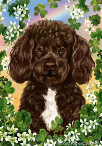 Clover House Flag - Brown and White Portuguese Water Dog 31488