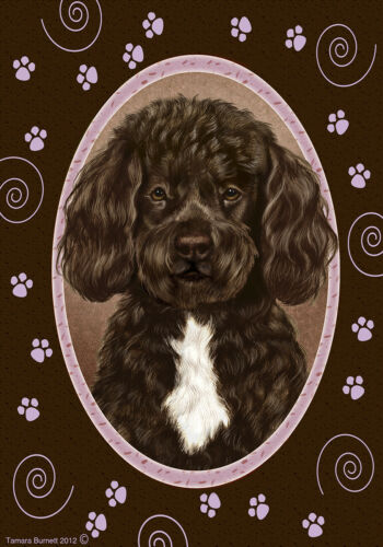 Paws House Flag - Brown and White Portuguese Water Dog 17488