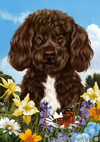 Summer House Flag - Brown and White Portuguese Water Dog 18488
