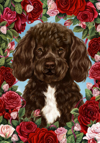 Roses Garden Flag - Brown and White Portuguese Water Dog 194881