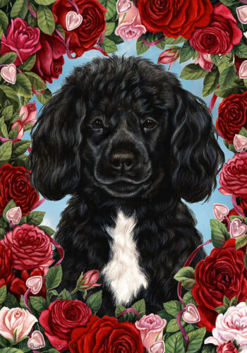 Roses House Flag - Black and White Portuguese Water Dog 19489