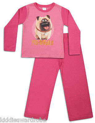 SECRET LIFE OF PETS PYJAMAS 5-6 YEARS GIRLS MEL THE PUG PJS