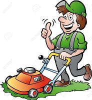 University Student - Lawn Mowing Service