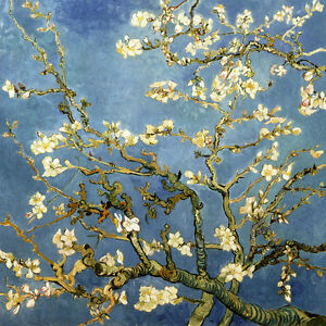 VINCENT VAN GOGH :: ALMOND TREE IN BLOOM ( BLOSSOM ) DETAIL 24
