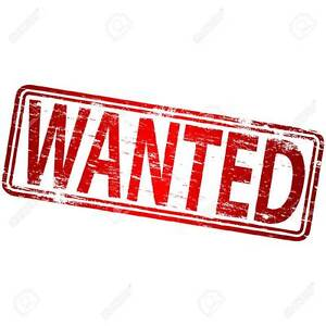 Horse Property - WANTED (any price) Camden Camden Area Preview