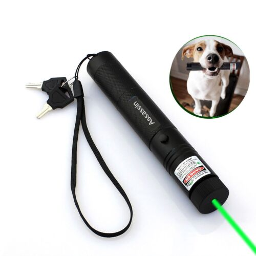 10 Miles Green Laser Pointer Pen 1mW 532nm Mini Rechargeable Pet Cat Toy Lazer