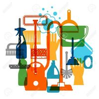 Excellent House/Business Cleaning!