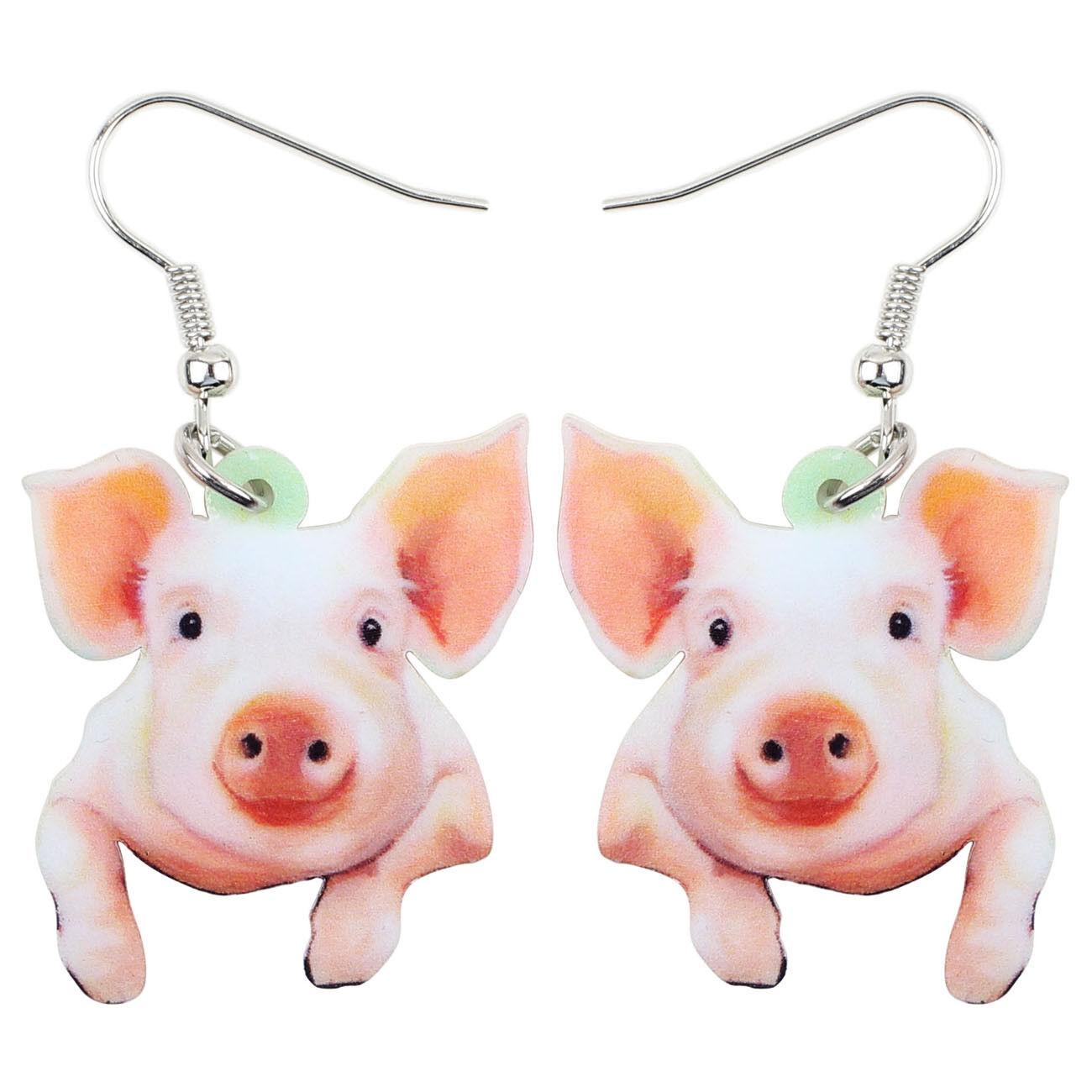 Acrylic Cute Funny Pig Piggy Earrings Dangle Charm Jewelry F