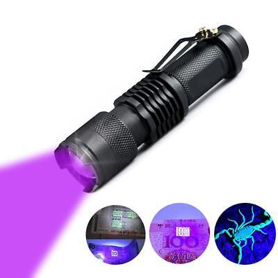 UV Flashlight Black Light Ultraviolet Detector for Dog Urine Pet Stains Bed Bug