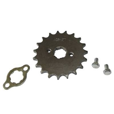 Pit Bike Front Sprocket 428 19 Tooth Teeth 20mm Hole 90cc 110cc 125cc 140cc (Bike Front Sprocket)