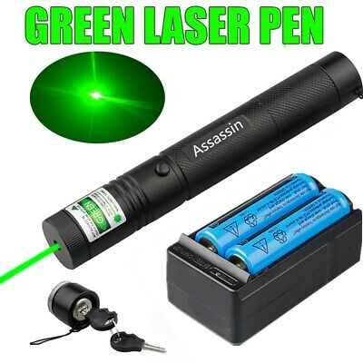 900Miles 532nm 301 Green Laser Pointer Lazer Pen +18650 Battery + Dual Charger