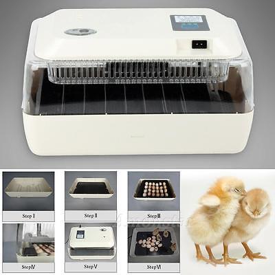 24 Eier Inkubator Brutkasten Brutmaschine Brutapparat Brüter Automatisch