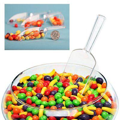 12 pc Plastic Bridal Wedding Party Favor Buffet dessert Bar Candy Scoops (Wedding Buffet)