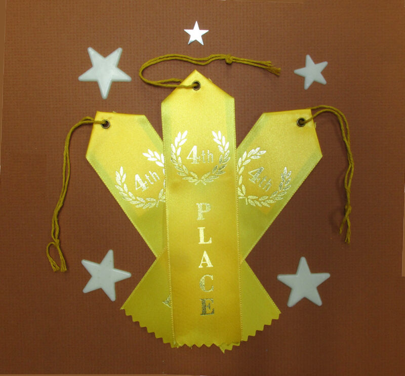 3 x FOURTH (4th) PLACE AWARD Best QUALITY Ribbons w/Card & String 2x8 FAST SHIP