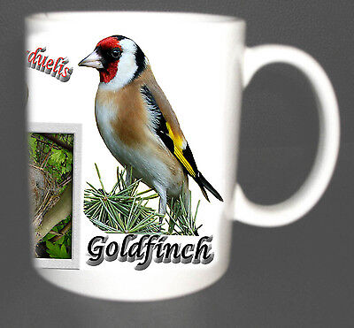 GOLDFINCH GARDEN BIRD MUG LIMITED EDITION XMAS GIFT NEW DESIGN, INC NEST, EGG *