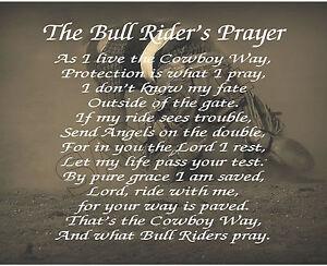 Funny bull rider quotes