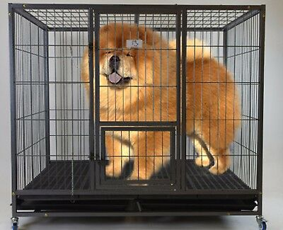 "Homey Pet-49"" Extra Large Heavy Duty Metal Dog Cage Kennel w/ Plastic Floor Grid"