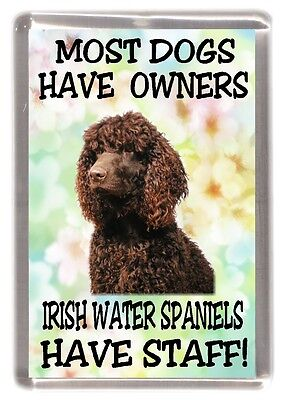 "Irish Water Spaniel Dog Fridge Magnet ""Most Dogs Have Owners ...... Have Staff"""