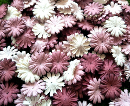 50+Petals+Daisy+Flowers+Mixed+Rosewood+Tone+White+Mulberry+Paper+Crafts+Wedding