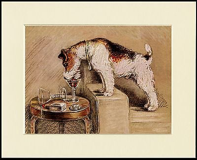 WIRE FOX TERRIER DRINKING FROM GLASS LOVELY DOG PRINT MOUNTED READY TO FRAME