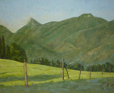 Expressionismus Gem�lde Berglandschaft Wiesenlandschaft Expressiver Realismus