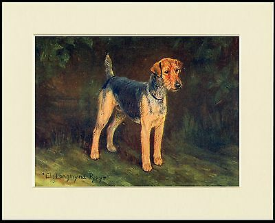 WELSH TERRIER NAMED CHAMPION DOG LOVELY PRINT MOUNTED READY TO FRAME