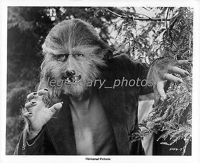 1973 The Boy Who Cried Werewolf Movie Press Photo