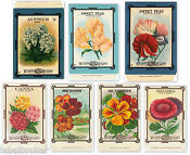 Vintage Seed Packet Lot